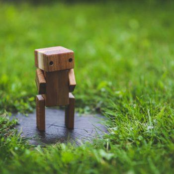 Holz-Bot im Gras